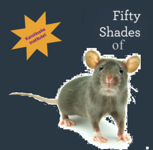 50 shades of mice