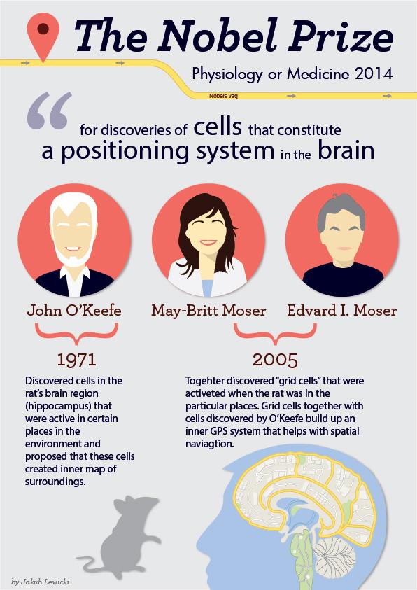 Nobel Prize in medicine 2014 – infographic – Karolinska