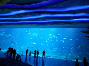The beautiful Ocean Kingdom in Zhuhai